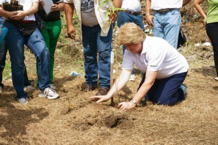 Siembra de árboles - Escuela San Martín
